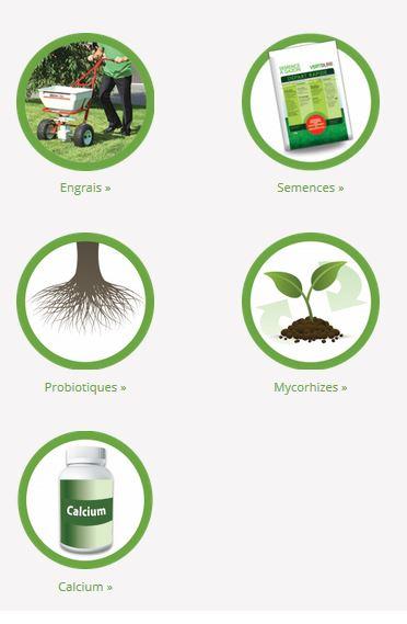 verdure1
